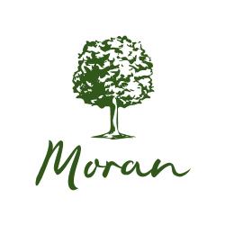 logo_tst007 (1)